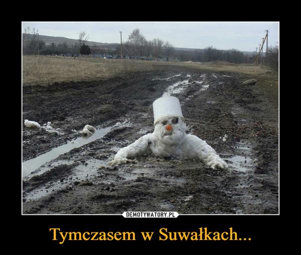 Tymczasem w Suwałkach... –