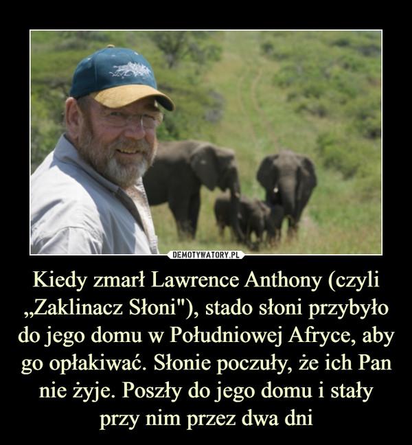 """Kiedy zmarł Lawrence Anthony (czyli """"Zaklinacz Słoni""""), stado słoni przybyło do jego domu w Południowej Afryce, aby go opłakiwać. Słonie poczuły, że ich Pan nie żyje. Poszły do jego domu i stały przy nim przez dwa dni –"""