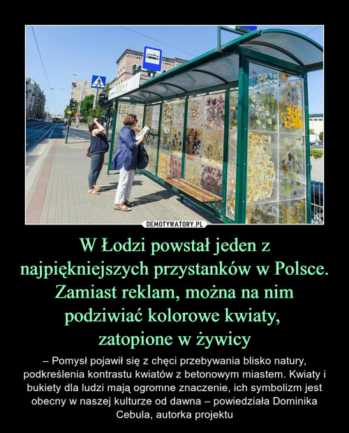 W Łodzi powstał jeden z najpiękniejszych przystanków w Polsce. Zamiast reklam, można na nim podziwiać kolorowe kwiaty,  zatopione w żywicy