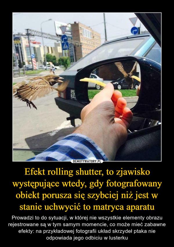 Efekt rolling shutter, to zjawisko występujące wtedy, gdy fotografowany obiekt porusza się szybciej niż jest w stanie uchwycić to matryca aparatu – Prowadzi to do sytuacji, w której nie wszystkie elementy obrazu rejestrowane są w tym samym momencie, co może mieć zabawne efekty: na przykładowej fotografii układ skrzydeł ptaka nie odpowiada jego odbiciu w lusterku