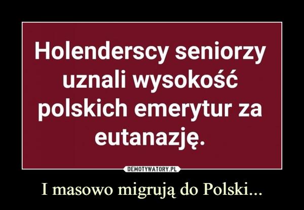 I masowo migrują do Polski... –  Holenderscy seniorzy uznali wysokość polskich emerytur za eutanazję