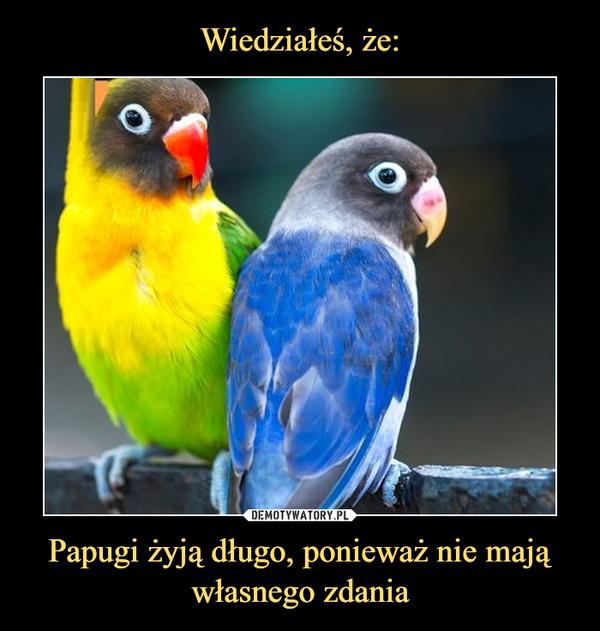 Papugi żyją długo, ponieważ nie mają własnego zdania –