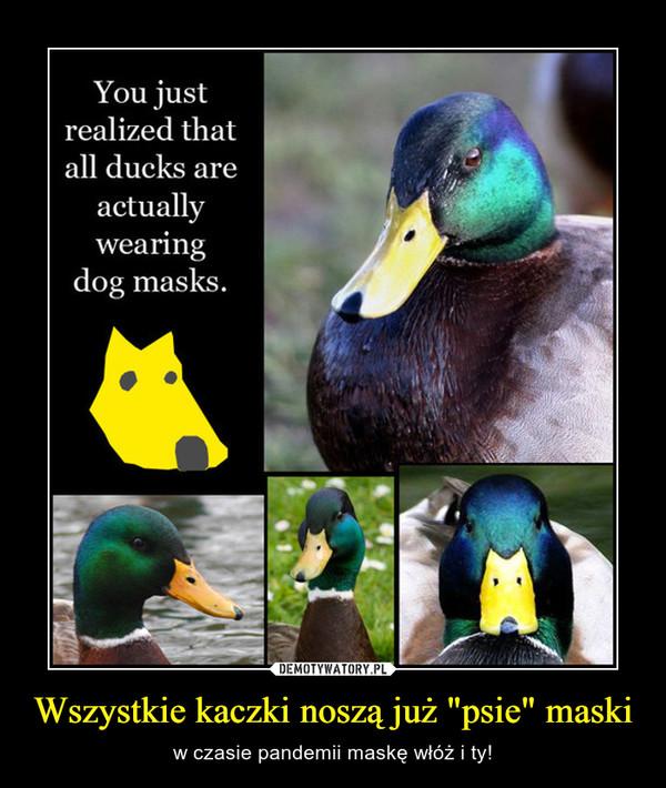 """Wszystkie kaczki noszą już """"psie"""" maski – w czasie pandemii maskę włóż i ty!"""
