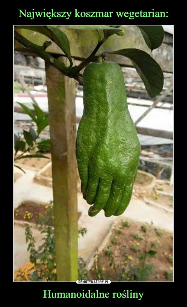 Humanoidalne rośliny –