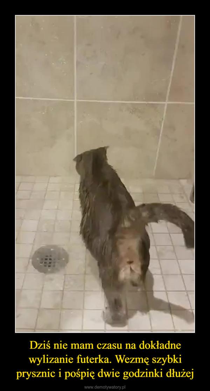Dziś nie mam czasu na dokładne wylizanie futerka. Wezmę szybki prysznic i pośpię dwie godzinki dłużej –