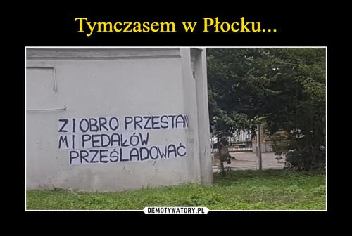 Tymczasem w Płocku...