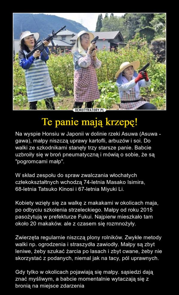 """Te panie mają krzepę! – Na wyspie Honsiu w Japonii w dolinie rzeki Asuwa (Asuwa - gawa), małpy niszczą uprawy kartofli, arbuzów i soi. Do walki ze szkodnikami stanęły trzy starsze panie. Babcie uzbroiły się w broń pneumatyczną i mówią o sobie, że są """"pogromcami małp"""". W skład zespołu do spraw zwalczania włochatych człekokształtnych wchodzą 74-letnia Masako Isimira, 68-letnia Tatsuko Kinosi i 67-letnia Miyuki Li.Kobiety wzięły się za walkę z makakami w okolicach maja, po odbyciu szkolenia strzeleckiego. Małpy od roku 2015 pasożytują w prefekturze Fukui. Najpierw mieszkało tam około 20 makaków. ale z czasem się rozmnożyły. Zwierzęta regularnie niszczą plony rolników. Zwykłe metody walki np. ogrodzenia i straszydła zawiodły. Małpy są zbyt leniwe, żeby szukać żarcia po lasach i zbyt cwane, żeby nie skorzystać z podanych, niemal jak na tacy, pól uprawnych. Gdy tylko w okolicach pojawiają się małpy. sąsiedzi dają znać myśliwym, a babcie momentalnie wytaczają się z bronią na miejsce zdarzenia"""