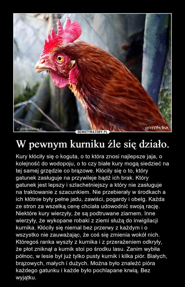 W pewnym kurniku źle się działo. – Kury kłóciły się o koguta, o to która znosi najlepsze jaja, o kolejność do wodopoju, o to czy białe kury mogą siedzieć na tej samej grzędzie co brązowe. Kłóciły się o to, który gatunek zasługuje na przywileje bądź ich brak. Który gatunek jest lepszy i szlachetniejszy a który nie zasługuje na traktowanie z szacunkiem. Nie przebierały w środkach a ich kłótnie były pełne jadu, zawiści, pogardy i obelg. Każda ze stron za wszelką cenę chciała udowodnić swoją rację. Niektóre kury wierzyły, że są podtruwane ziarnem. Inne wierzyły, że wykopane robaki z ziemi służą do inwigilacji kurnika. Kłóciły się niemal bez przerwy z każdym i o wszystko nie zauważając, że coś się zmienia wokół nich. Któregoś ranka wyszły z kurnika i z przerażeniem odkryły, że płot zniknął a kurnik stoi po środku lasu. Zanim wybiła północ, w lesie był już tylko pusty kurnik i kilka piór. Białych, brązowych, małych i dużych. Można było znaleźć pióra każdego gatunku i każde było pochlapane krwią. Bez wyjątku.