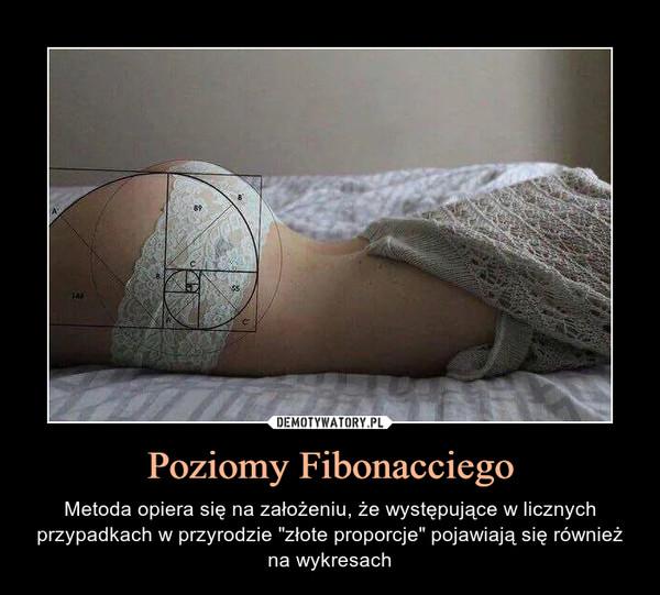 """Poziomy Fibonacciego – Metoda opiera się na założeniu, że występujące w licznych przypadkach w przyrodzie """"złote proporcje"""" pojawiają się również na wykresach"""