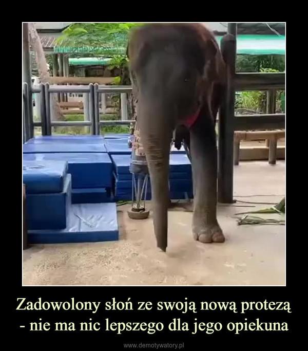Zadowolony słoń ze swoją nową protezą- nie ma nic lepszego dla jego opiekuna –