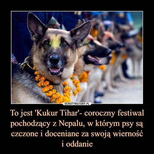 To jest 'Kukur Tihar'- coroczny festiwal pochodzący z Nepalu, w którym psy są czczone i doceniane za swoją wierność i oddanie