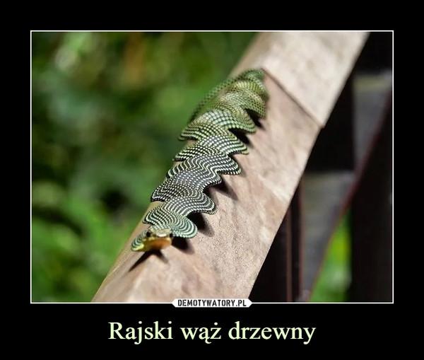 [Obrazek: 1605548276_mlos81_600.jpg]