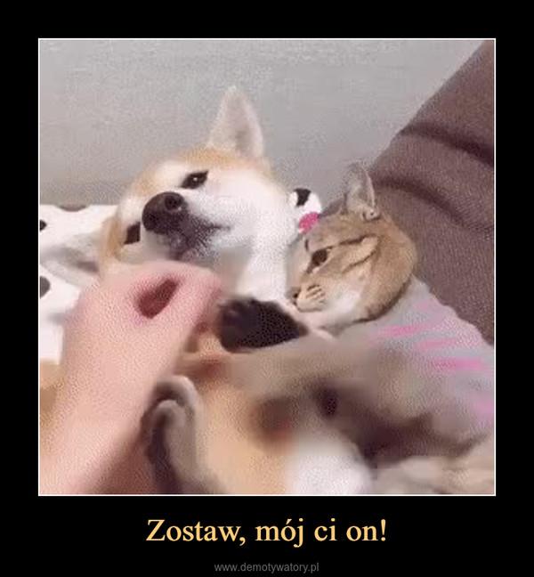 Zostaw, mój ci on! –