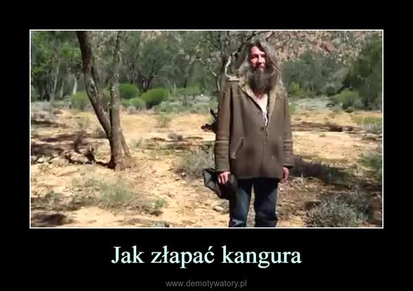 Jak złapać kangura –