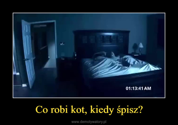 Co robi kot, kiedy śpisz? –