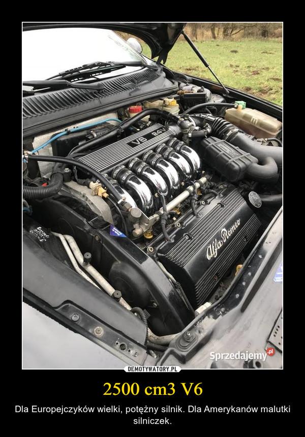 2500 cm3 V6 – Dla Europejczyków wielki, potężny silnik. Dla Amerykanów malutki silniczek.
