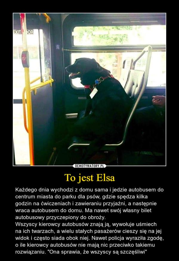 """To jest Elsa – Każdego dnia wychodzi z domu sama i jedzie autobusem do centrum miasta do parku dla psów, gdzie spędza kilka godzin na ćwiczeniach i zawieraniu przyjaźni, a następnie wraca autobusem do domu. Ma nawet swój własny bilet autobusowy przyczepiony do obroży.Wszyscy kierowcy autobusów znają ją, wywołuje uśmiech na ich twarzach, a wielu stałych pasażerów cieszy się na jej widok i często siada obok niej. Nawet policja wyraziła zgodę, o ile kierowcy autobusów nie mają nic przeciwko takiemu rozwiązaniu. """"Ona sprawia, że wszyscy są szczęśliwi"""""""