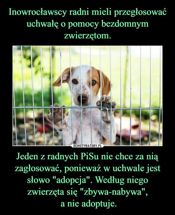 """Jeden z radnych PiSu nie chce za nią zagłosować, ponieważ w uchwale jest słowo """"adopcja"""". Według niego zwierzęta się """"zbywa-nabywa"""", a nie adoptuje. –"""