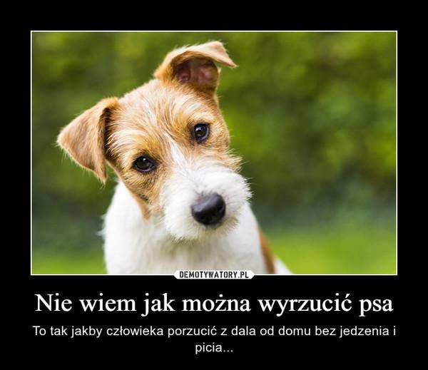 Nie wiem jak można wyrzucić psa – To tak jakby człowieka porzucić z dala od domu bez jedzenia i picia...