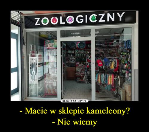 - Macie w sklepie kameleony? - Nie wiemy