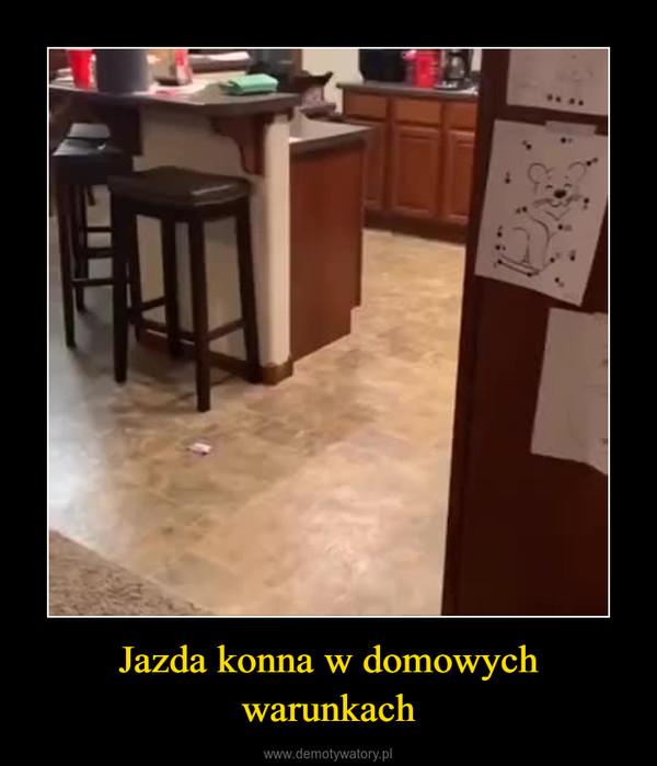 Jazda konna w domowych warunkach –