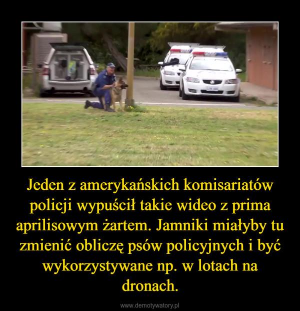 Jeden z amerykańskich komisariatów policji wypuścił takie wideo z prima aprilisowym żartem. Jamniki miałyby tu zmienić obliczę psów policyjnych i być wykorzystywane np. w lotach na dronach. –