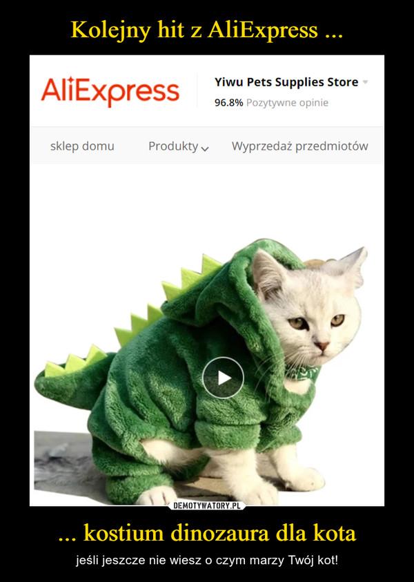 ... kostium dinozaura dla kota – jeśli jeszcze nie wiesz o czym marzy Twój kot!