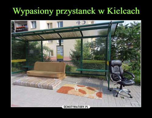 Wypasiony przystanek w Kielcach