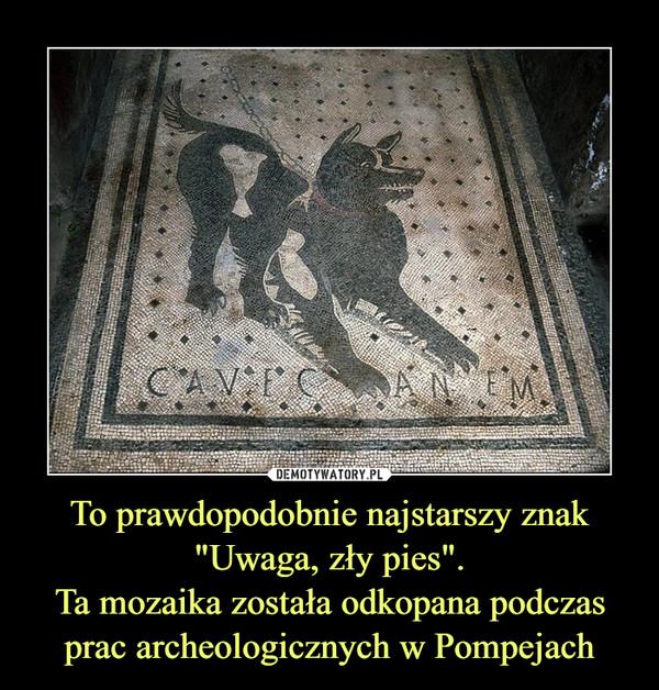"""To prawdopodobnie najstarszy znak """"Uwaga, zły pies"""".Ta mozaika została odkopana podczas prac archeologicznych w Pompejach –"""