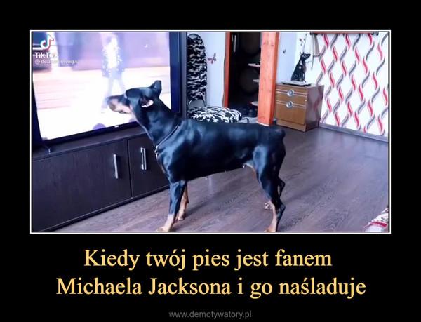 Kiedy twój pies jest fanem Michaela Jacksona i go naśladuje –