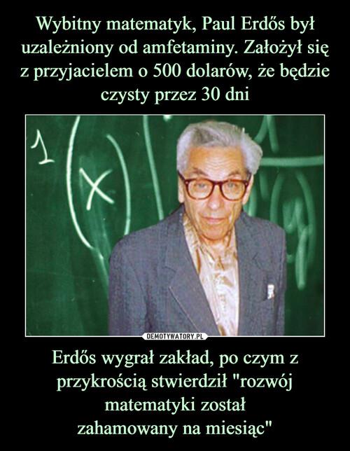 """Wybitny matematyk, Paul Erdős był uzależniony od amfetaminy. Założył się z przyjacielem o 500 dolarów, że będzie czysty przez 30 dni Erdős wygrał zakład, po czym z przykrością stwierdził """"rozwój matematyki został zahamowany na miesiąc"""""""
