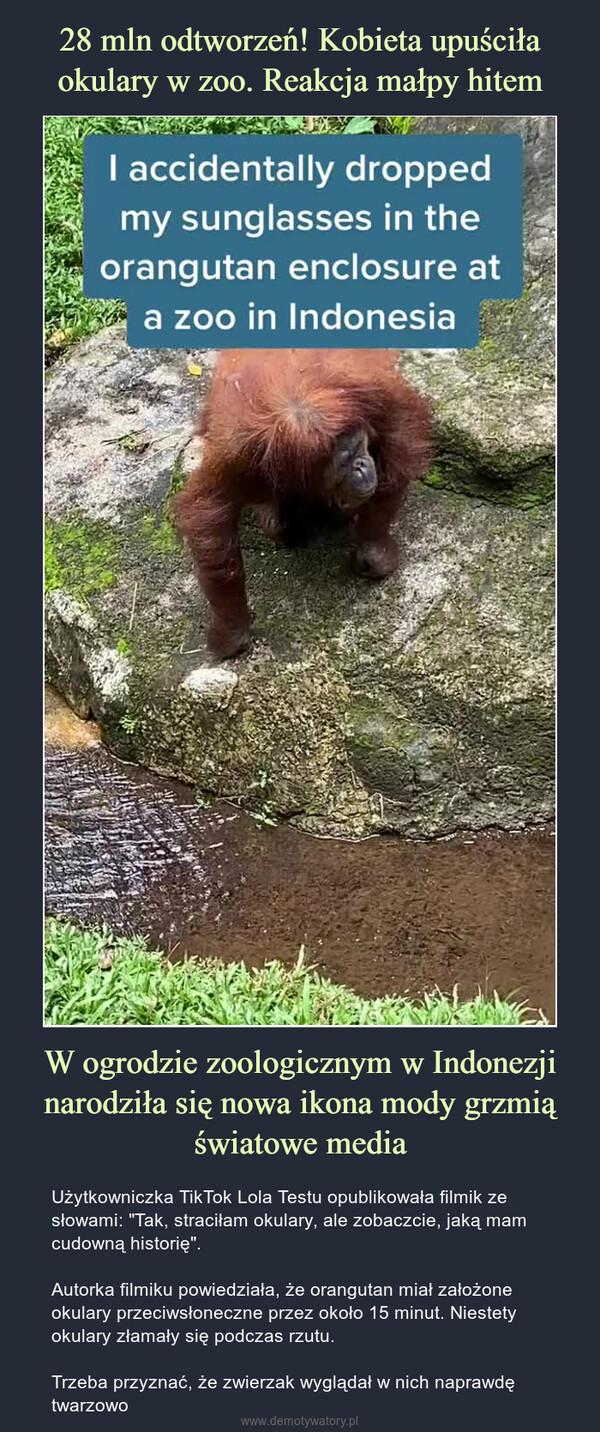 """W ogrodzie zoologicznym w Indonezji narodziła się nowa ikona mody grzmią światowe media – Użytkowniczka TikTok Lola Testu opublikowała filmik ze słowami: """"Tak, straciłam okulary, ale zobaczcie, jaką mam cudowną historię"""".Autorka filmiku powiedziała, że orangutan miał założone okulary przeciwsłoneczne przez około 15 minut. Niestety okulary złamały się podczas rzutu.Trzeba przyznać, że zwierzak wyglądał w nich naprawdę twarzowo"""