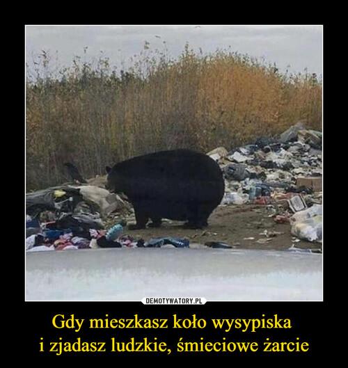 Gdy mieszkasz koło wysypiska  i zjadasz ludzkie, śmieciowe żarcie
