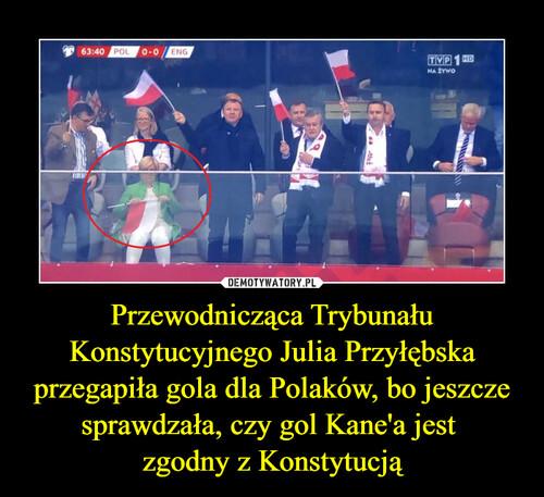 Przewodnicząca Trybunału Konstytucyjnego Julia Przyłębska przegapiła gola dla Polaków, bo jeszcze sprawdzała, czy gol Kane'a jest  zgodny z Konstytucją