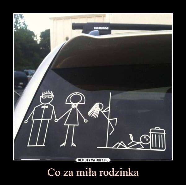 Co za miła rodzinka –