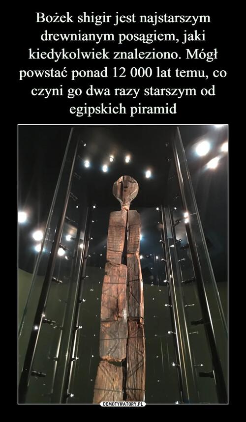 Bożek shigir jest najstarszym drewnianym posągiem, jaki kiedykolwiek znaleziono. Mógł powstać ponad 12 000 lat temu, co czyni go dwa razy starszym od egipskich piramid