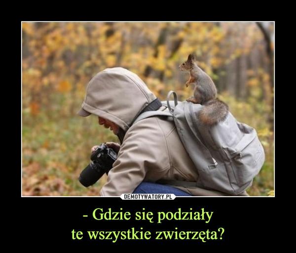 1536584521_zibm5k_600.jpg