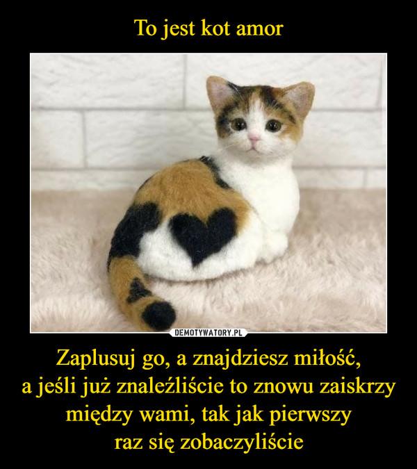 To jest kot amor Zaplusuj go, a znajdziesz miłość, a jeśli już znaleźliście to znowu zaiskrzy między wami, tak jak pierwszy raz się zobaczyliście